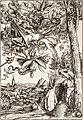 Svatý Antonín nesený démony (Lucas Cranach starší), Národní galerie v Praze.jpg