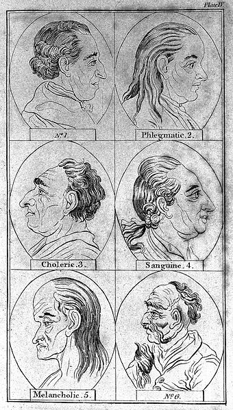 lavater essays Lavater's physiognomy: a checklist by john graham when lavater's looking-glass, or essays on the face oj animated nature from man to plants london.