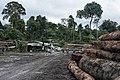 Terra Indígena Pirititi, Roraima (27785631847).jpg