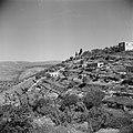 Terrassen met olijfgaarden bij Ain Karem (Ein Kerem), Bestanddeelnr 255-0428.jpg