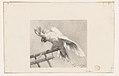 The Angry Parrot MET DP224971.jpg