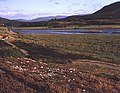 The Kyle of Sutherland - geograph.org.uk - 621221.jpg