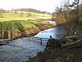 The River Wansbeck at Wallington - geograph.org.uk - 675468.jpg