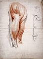 The bones and muscles of the hip and thigh. Drawing, 1841. Wellcome L0027122.jpg