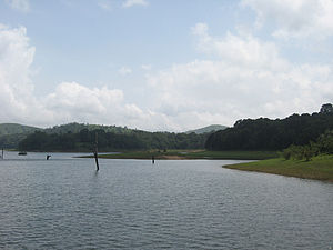 The waters of Thekkady, which is in the Idukki...