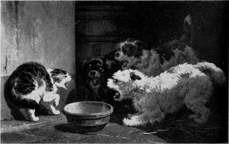 File:Three against One by Henriëtte Ronner-Knip Rijksmuseum Amsterdam SK-A-1124.jpg