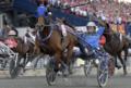 Timoko wins Elitloppet 2017.png