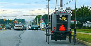 English: Amish buggy on a road in Lancaster Co...