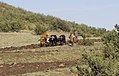 Traditional ploughing in Lesotho 02.jpg