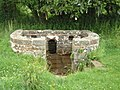 Trellech's holy well - geograph.org.uk - 477787.jpg