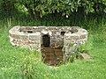 Trellech's holy well - geograph.org.uk - 477787.jpg