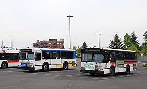 Two 1991-built, 30-foot Gillig buses of TriMet...