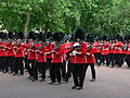 Trooping the Colour 2006 - P1110218 (169170255).jpg