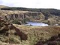 Troy Quarry - geograph.org.uk - 1205694.jpg
