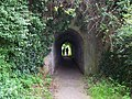 Tunnel On Footpath To St Decumens - geograph.org.uk - 1438825.jpg