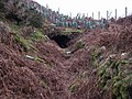 Tunnel on Hill's Tramroad - geograph.org.uk - 634666.jpg