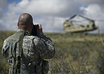 US Army trains for real-world missions at Holloman 140923-F-WI299-006.jpg