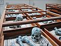 Underground Flowers (Xe Biennale de Lyon) (4103286907).jpg