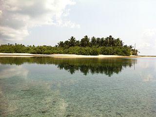 Maldives-Lakshadweep-Chagos Archipelago tropical moist forests terrestrial ecoregion in South Asia
