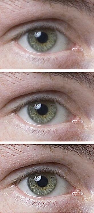 Unsharp masking - Source image (top), sharpened image (middle), highly sharpened image (bottom).
