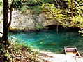 Val de Cusance. Source bleue. (4).jpg