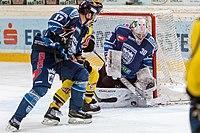 Vienna Capitals vs Fehervar AV19 -200-10.jpg