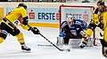 Vienna Capitals vs Fehervar AV19 -200-11.jpg