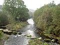 View downriver. - geograph.org.uk - 599512.jpg