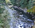 View from Capilano Suspension Bridge - panoramio.jpg