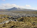 View of Ingleborough - geograph.org.uk - 1194307.jpg