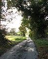 View south along Leavy Oak Road - geograph.org.uk - 1565485.jpg