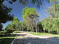 Villa Urquiza, Entre Rios, Argentina - panoramio (127).jpg