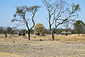 Village along road from Botwana to Katima Mulilo - panoramio.jpg