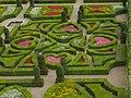 Villandry - château, jardin d'ornement (07).jpg