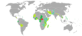 Visa requirements for Central African Republic citizens.png