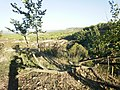 Vistas desde la huerta Engaña Óleos - panoramio.jpg