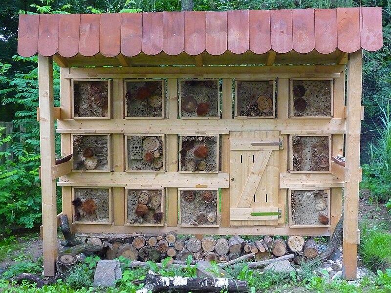 Файл:Vivarium Hotel für Wildbienen.JPG
