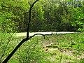 Vodní plocha mezi obcemi Nebovidy a Střelice.jpg