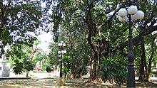 Mehan Garden