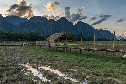 Walkway and hut in paddy fields at sunset in Vang Vieng Laos