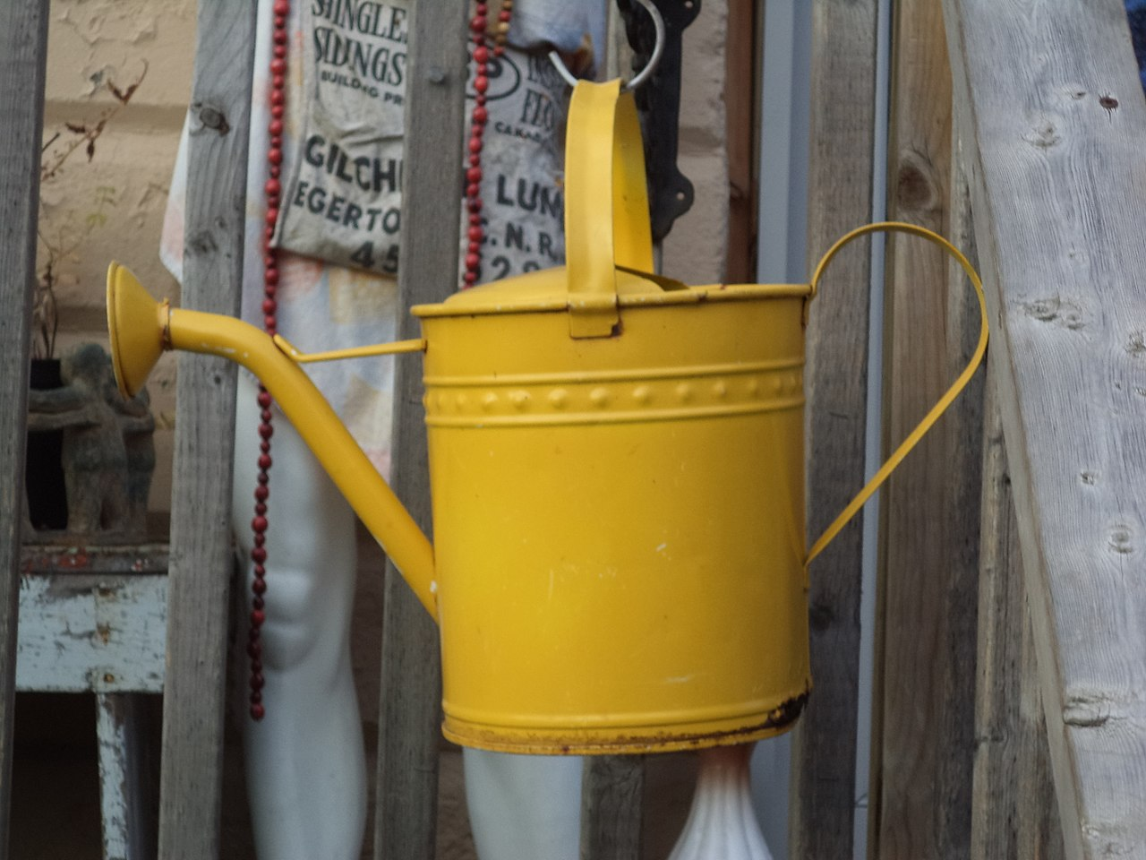 Watering can WPC4.JPG