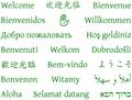 Welcome in nineteen languages PDF.pdf