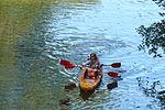 Welna river in Oborniki (7).JPG