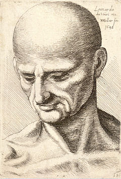 Wenceslas Hollar - Bald elderly man looking down