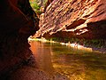 West Fork of Oak Creek Canyon.jpg