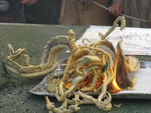 Mercury(II) thiocyanate - Pharaoh's serpent demonstration