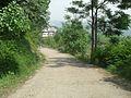 While travelling to Banjosa Lake.jpg