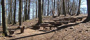 Betzenberg Wildlife Park - Woodland school