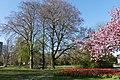 Wilhelminapark, Breda P1360759.jpg
