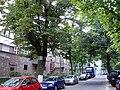 WilmersdorfAmVolkspark.jpg
